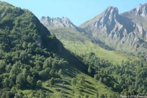 Route du voyage - Val d'Azun (65) - Paysage 03
